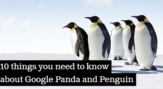 SEO-Things-You-Need-To-Know-About-Google-Panda-and-PenguinSEO-