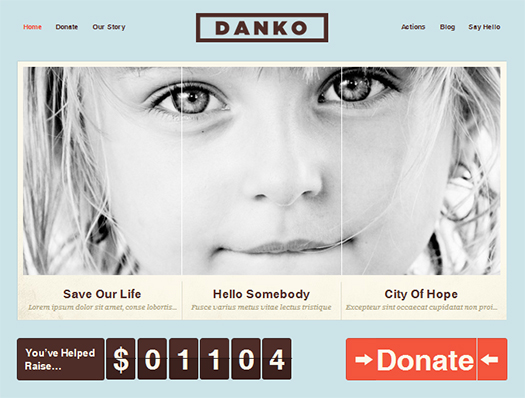 WordPress-Theme-For-Charity-Organizations