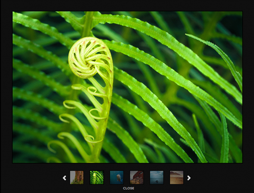 Smart Image gallery powered by jQuery