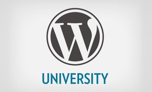 How-To-Become-A-Top-WordPress-Developer