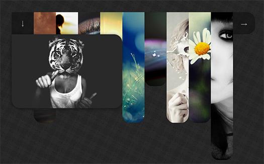 Free-Tumblr-Portfolio-Theme-Organ