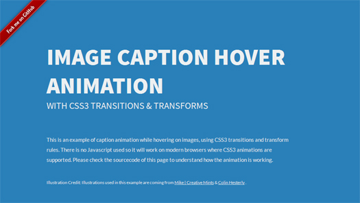 Image Caption Hover Animations