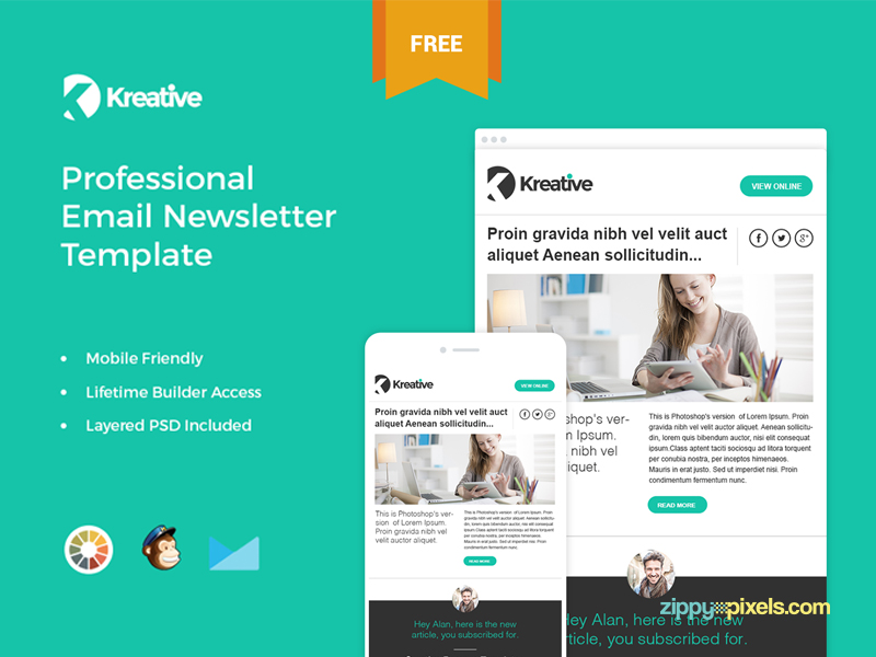 Free Responsive Email Templates EGrappler - Mailchimp mobile templates