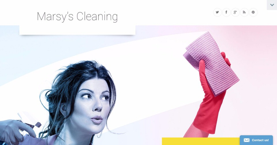 Best WordPress Theme Cleaning Services