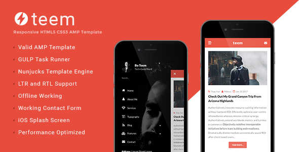 teem AMP Blogging Template