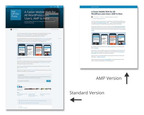 AMP VS. Standard Optimization