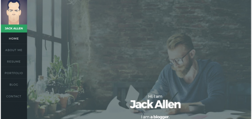 11 Best WordPress Themes for Resumes