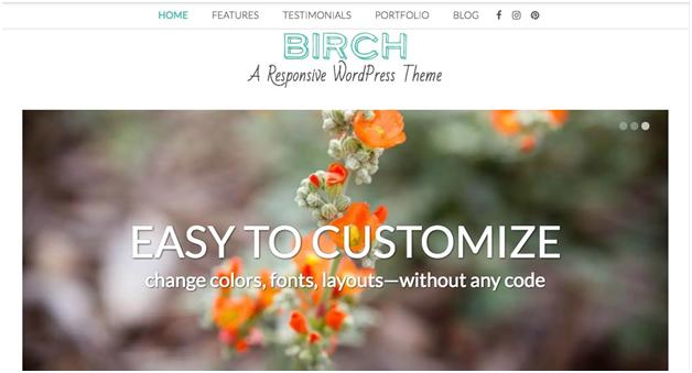 Birch A Responsive WordPress Theme