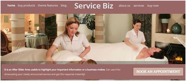 Service Biz by Templatic