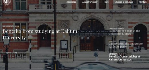 Kalium - Creative WordPress Theme
