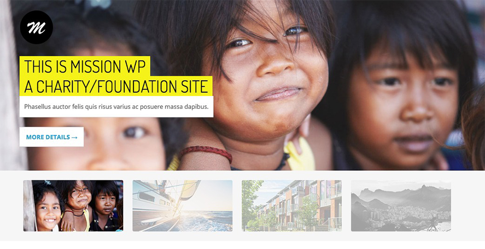 Responsive WP Theme for Charity