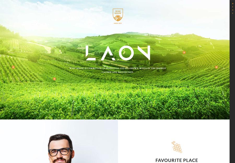 Laon   Wine House, Winery & Wine Shop WordPress Theme