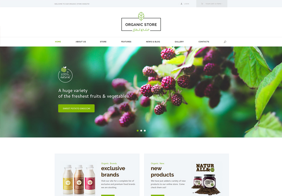 Organic Store | Organic Food & Eco Products WordPress Theme + RTL