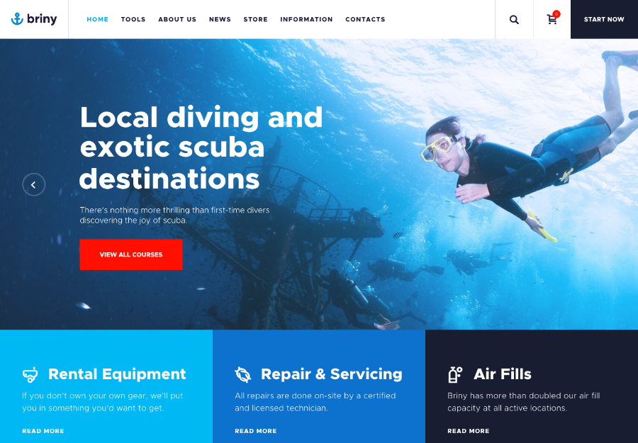 Briny | Scuba Diving School & Water Sports WordPress Theme