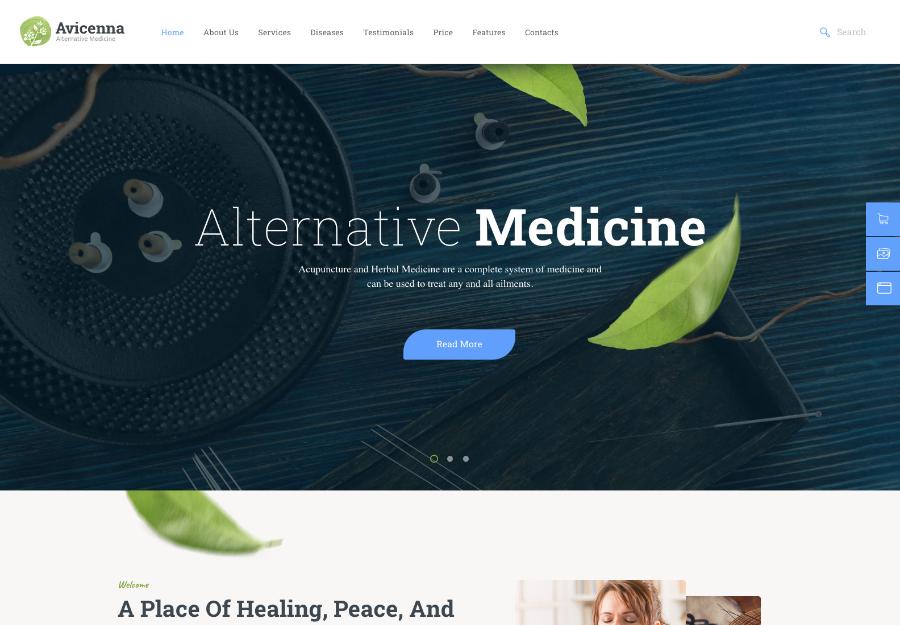 Avicenna   Alternative Folk Medicine Doctor WordPress Theme + Shop